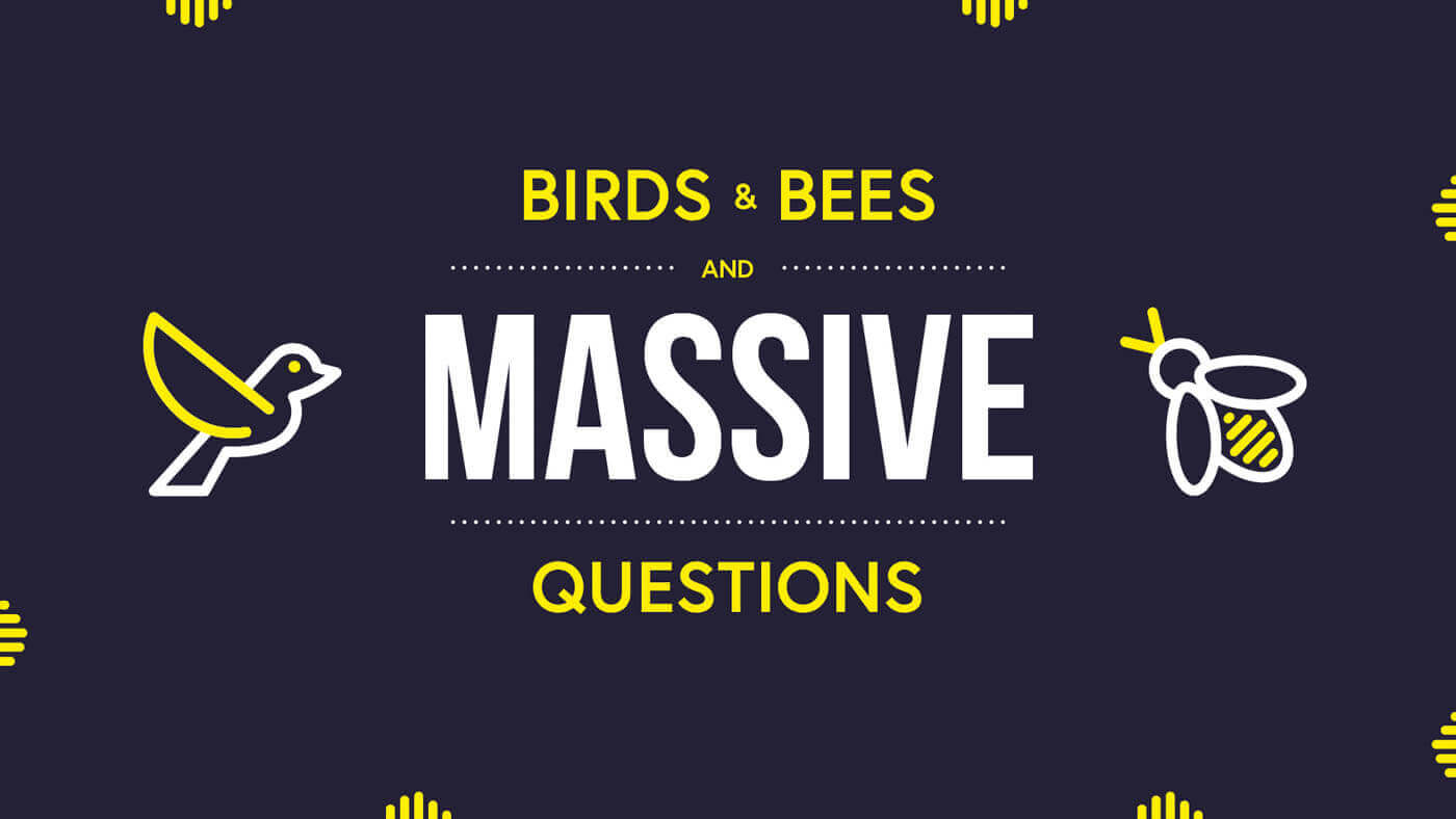 Birds and Bees and Massive Questions
