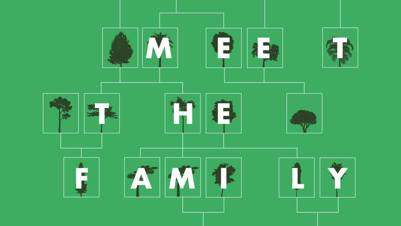 Meet the Family