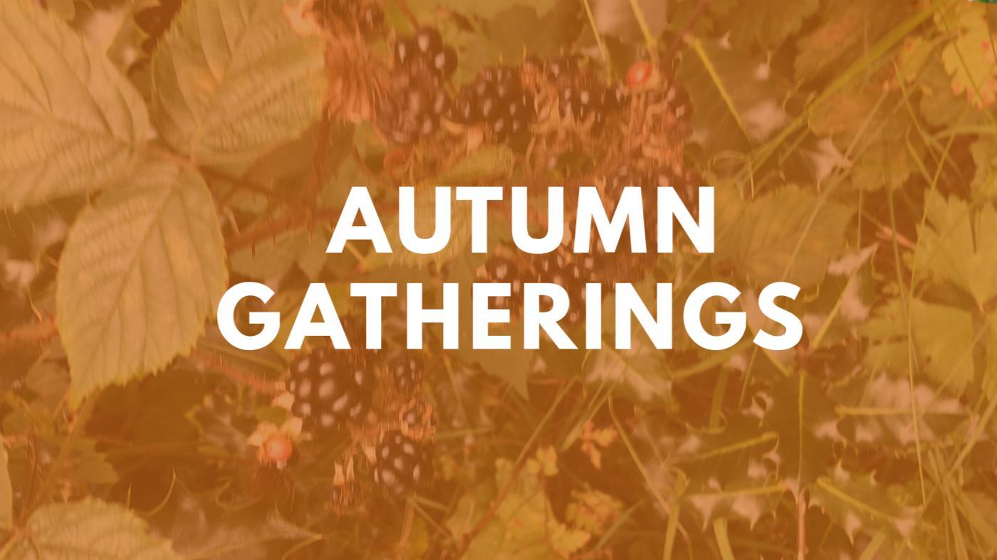 Autumn Gatherings 2020